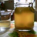 Come preparare il kefir d'acqua